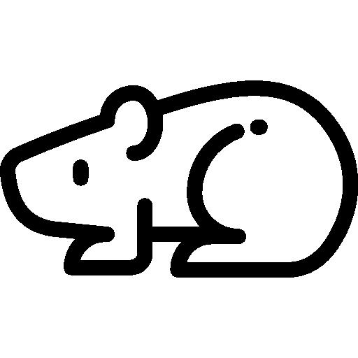 小動物(ハムスター等)