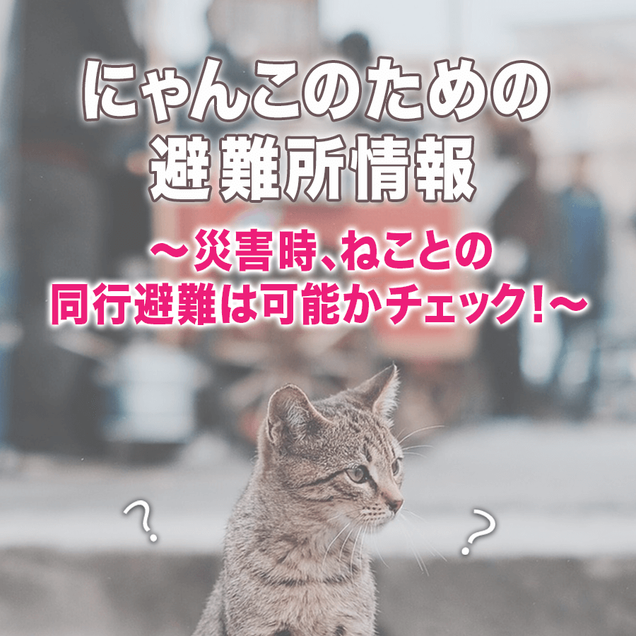猫と犬の避難ー東京23区